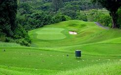 hawaii big island tours from honolulu:Hawaii Golf Tour (18-hole)