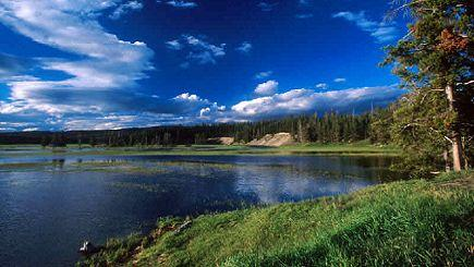7-Day Yellowstone National Park, Grand Canyon West (Skywalk) Tour (Start in LV, End in LA)