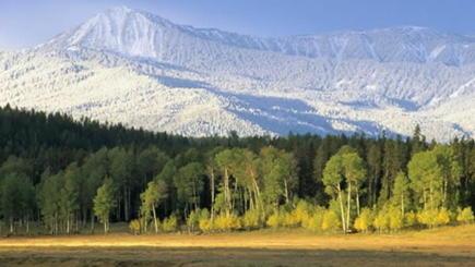 11-Day Breathtaking West Coast Tour: Yellowstone, Arches, Rushmore, & Grand Canyon W/ California Theme Parks