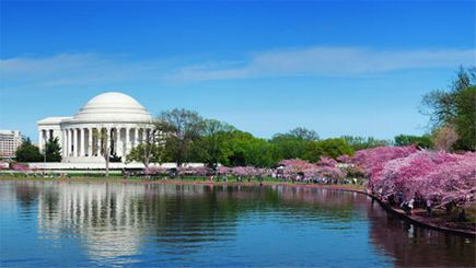 3-Day Bus Tour to Washington DC, Baltimore, Philadelphia and New York from Boston