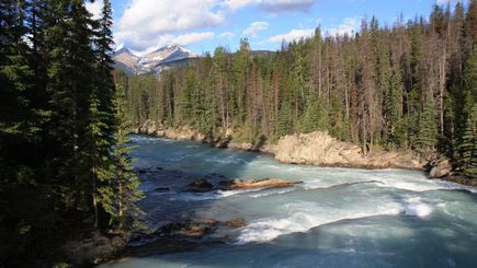 bus trips from vancouver to leavenworth christmas:5-Day Canadian Rocky & Victoria Summer Tour Package