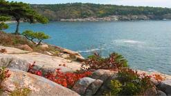 7 day west coast us tours:2-Day Bus Tour to Maine Acadia National Park, Bar Harbor from Boston