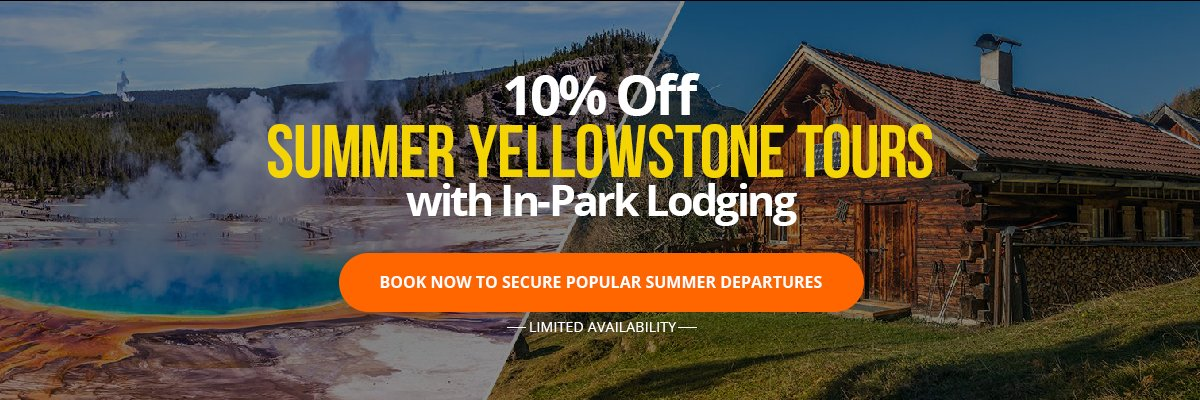 Yellowstone Early Summer Sale