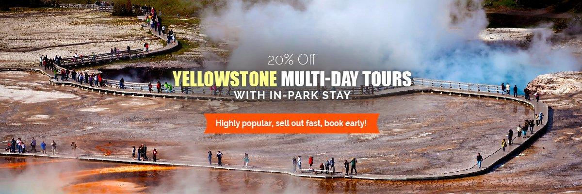 Yellowstone Sale