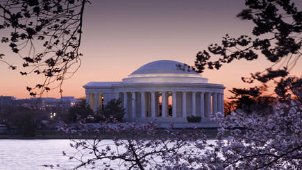 1-Day Washington, D.C. Bus Tour from New York City