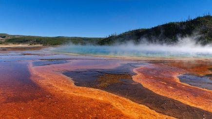 9 Days Yellowstone, West Grand Canyon(Skywalk), San Francisco, Yosemite Tour(Starts in SLC/Ends in LA)