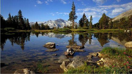 9-Day San Francisco, Yellowstone, Mt.Rushmore, Theme park Tour(Starts in SFO/Ends in SLC)