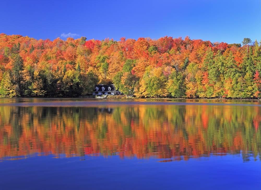 5-Day East Canada Maples Tour: Ottawa - Montreal - Mont Tremblant - Quebec - Niagara Falls from Toronto