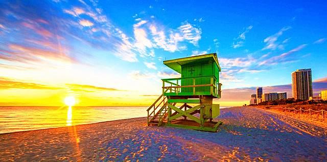 Miami & Everglades Tour