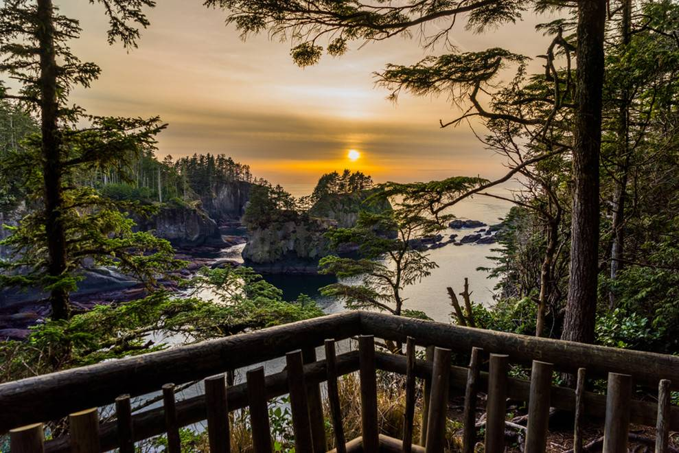 4-Day Seattle Tour: Olympic National Park, Mt. Rainier National Park, Snoqualmie Falls