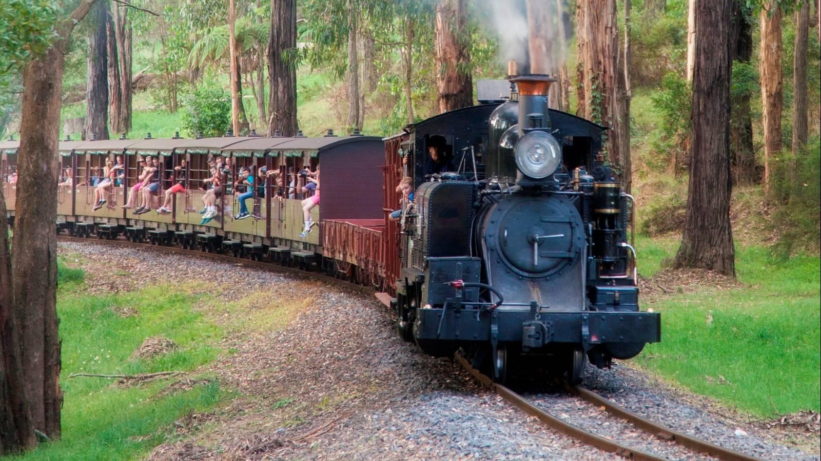Puffing Billy Steam Train + Yarra Valley Wine Tour