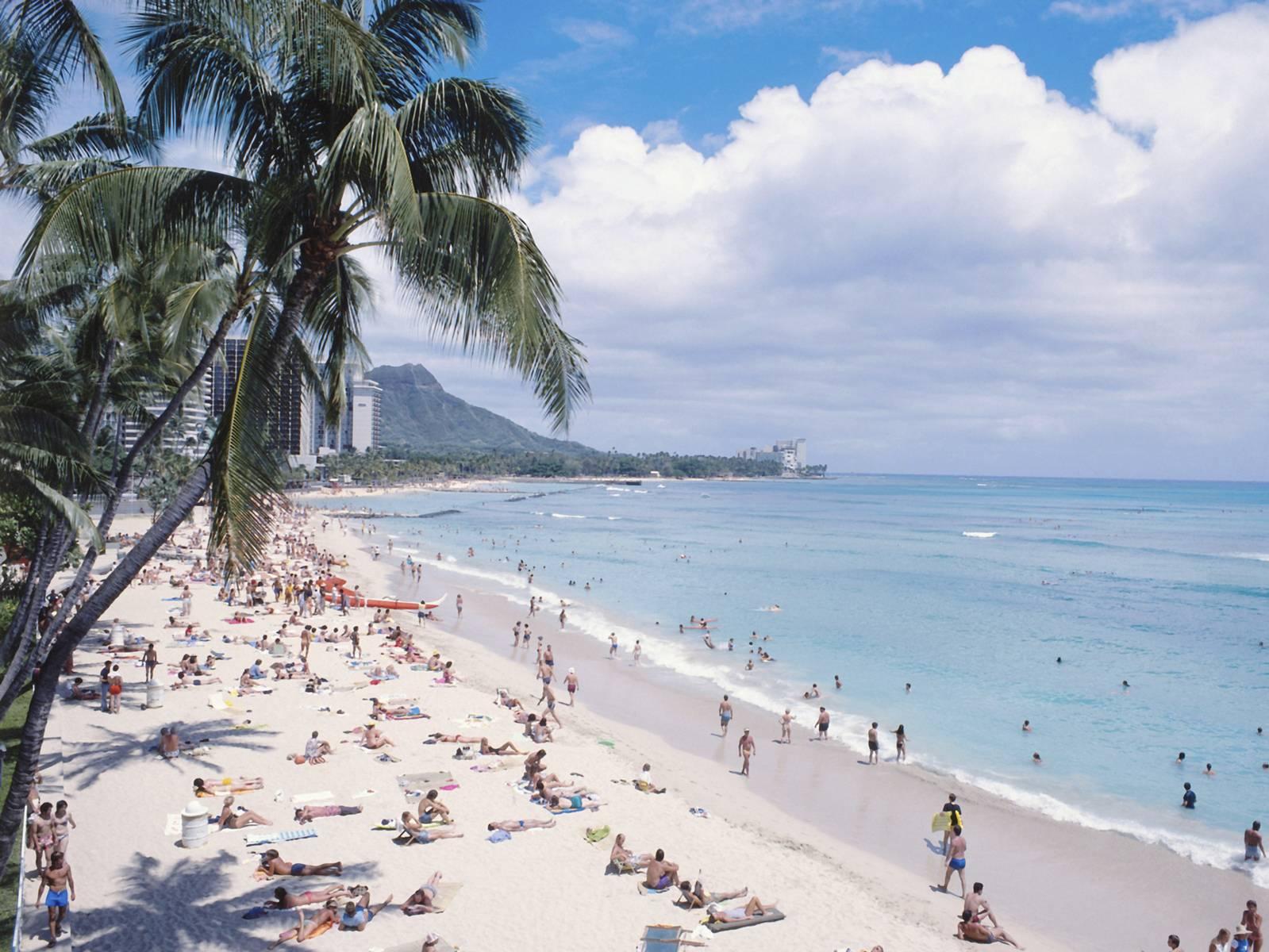 Oahu Tour to Grand Circle Island, Kualoa Ranch and Dole Pineapple Plantation