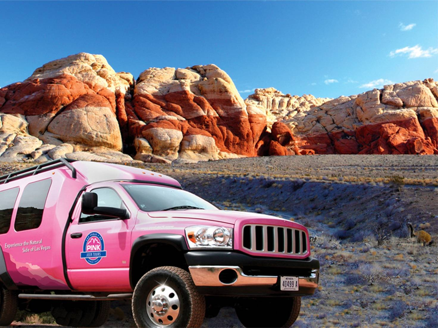 Red Rock Canyon Tour w/ PINK JEEP Tours