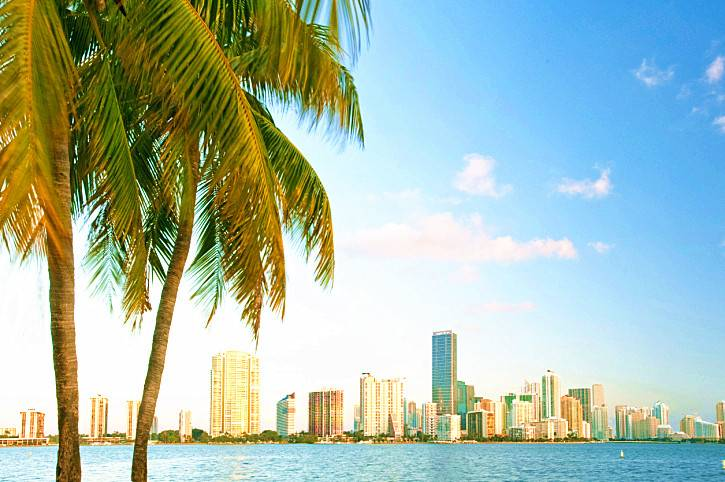 1-Day Miami City Tour