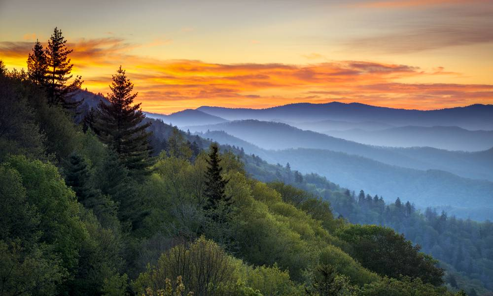 3-Day Great Smoky Mountains Bus Tour from DC: Luray Cavern, Biltmore Estate, Natural Bridge