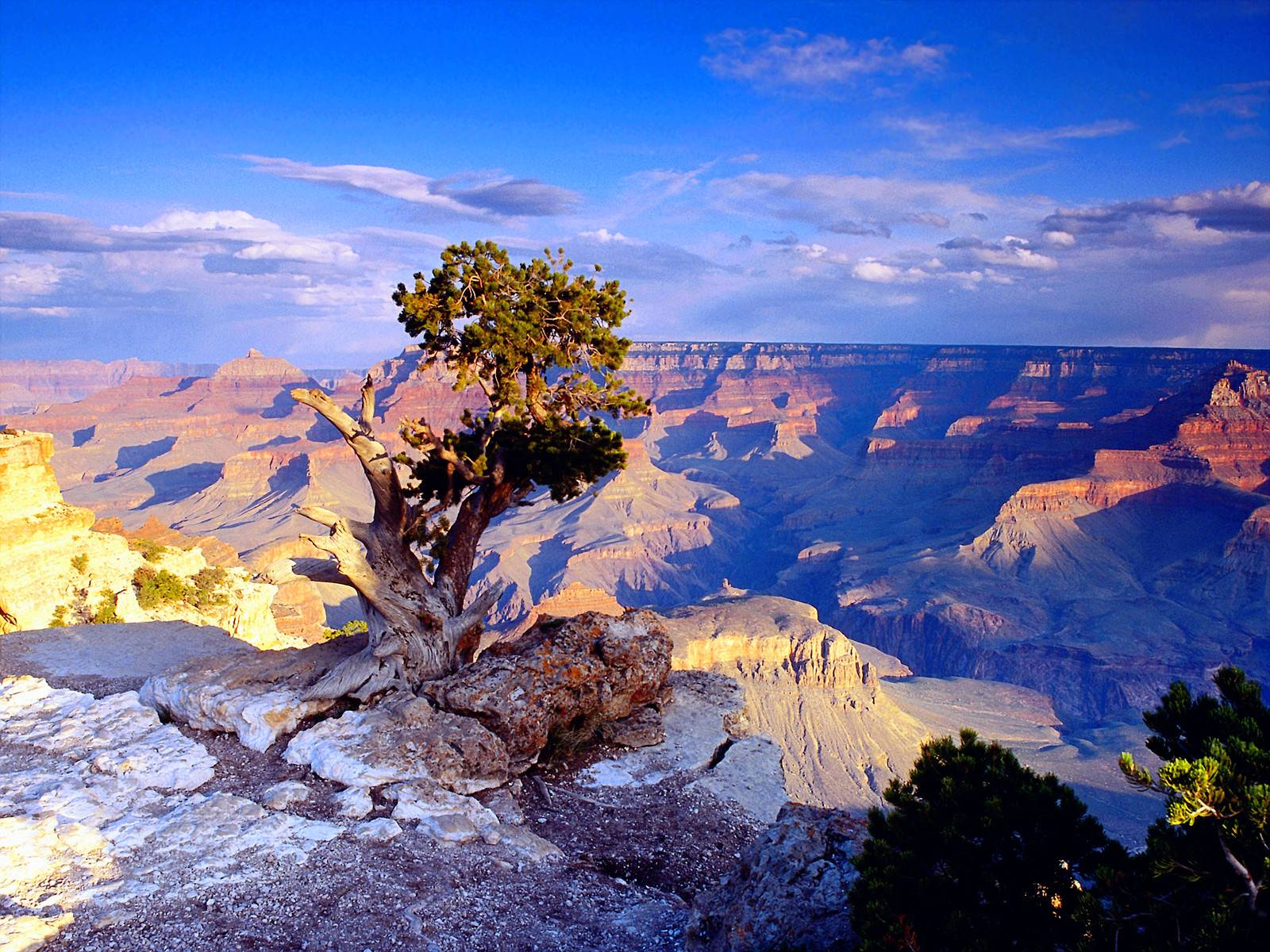 5-Day San Francisco, Grand Canyon South Rim, Lake Powell, Horseshoe Bend, Antelope Slot Canyon and Las Vegas Tour
