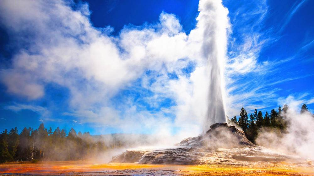 Majestic 11 Day West Coast National Parks Tour Tours4fun