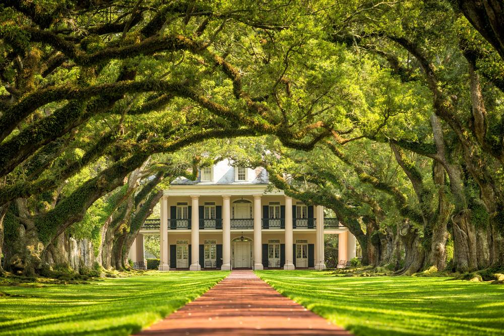 3-Day Louisiana Tour From Houston: New Orleans, Baton Rouge & Oak Alley Plantation