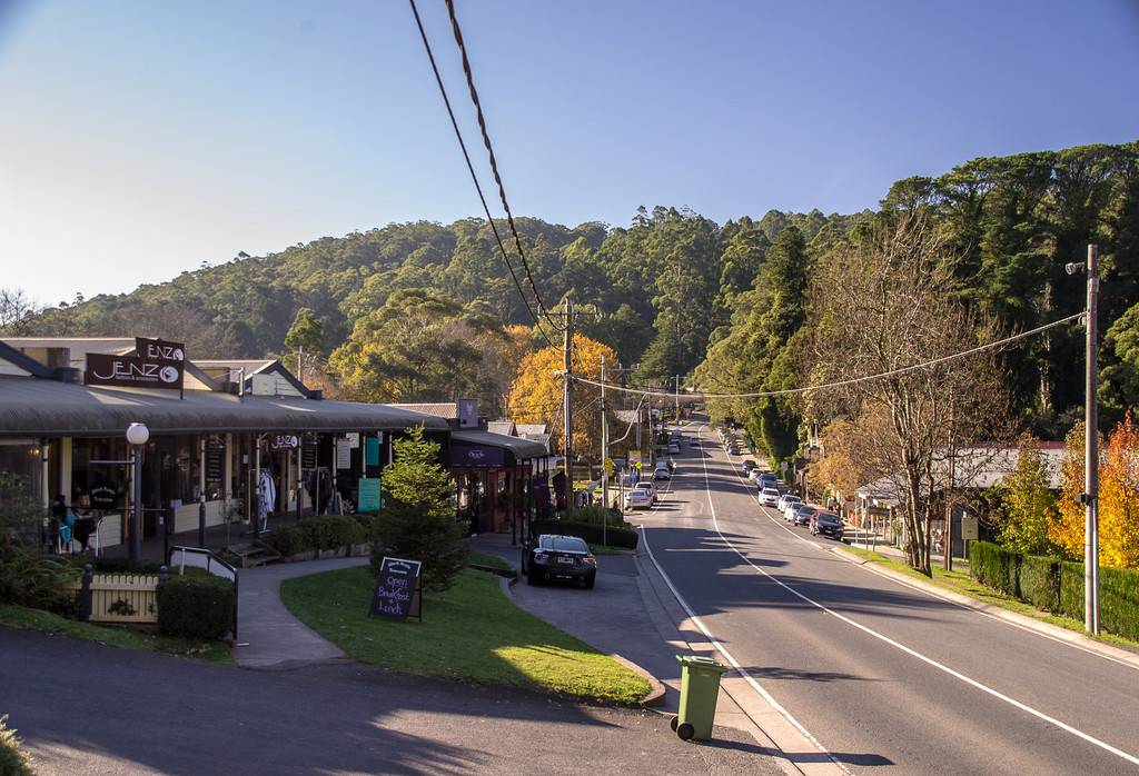 Puffing Billy Railway Tour W/ Dandenongs Ranges National Park