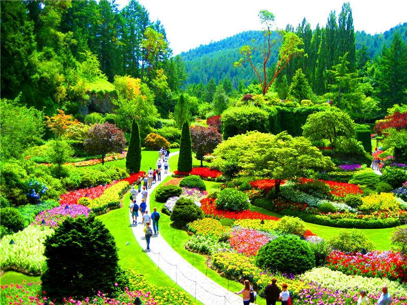 2 day victoria whistler and butchart gardens tour from - Butchart gardens tour from victoria ...