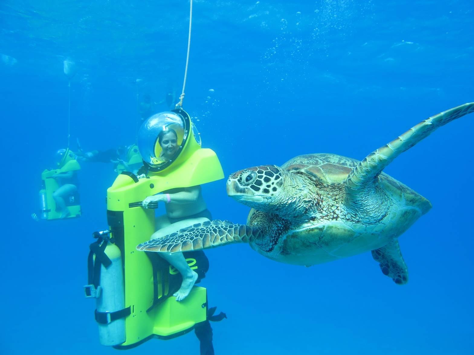Bob S Hawaii Adventure Tour Tours4fun