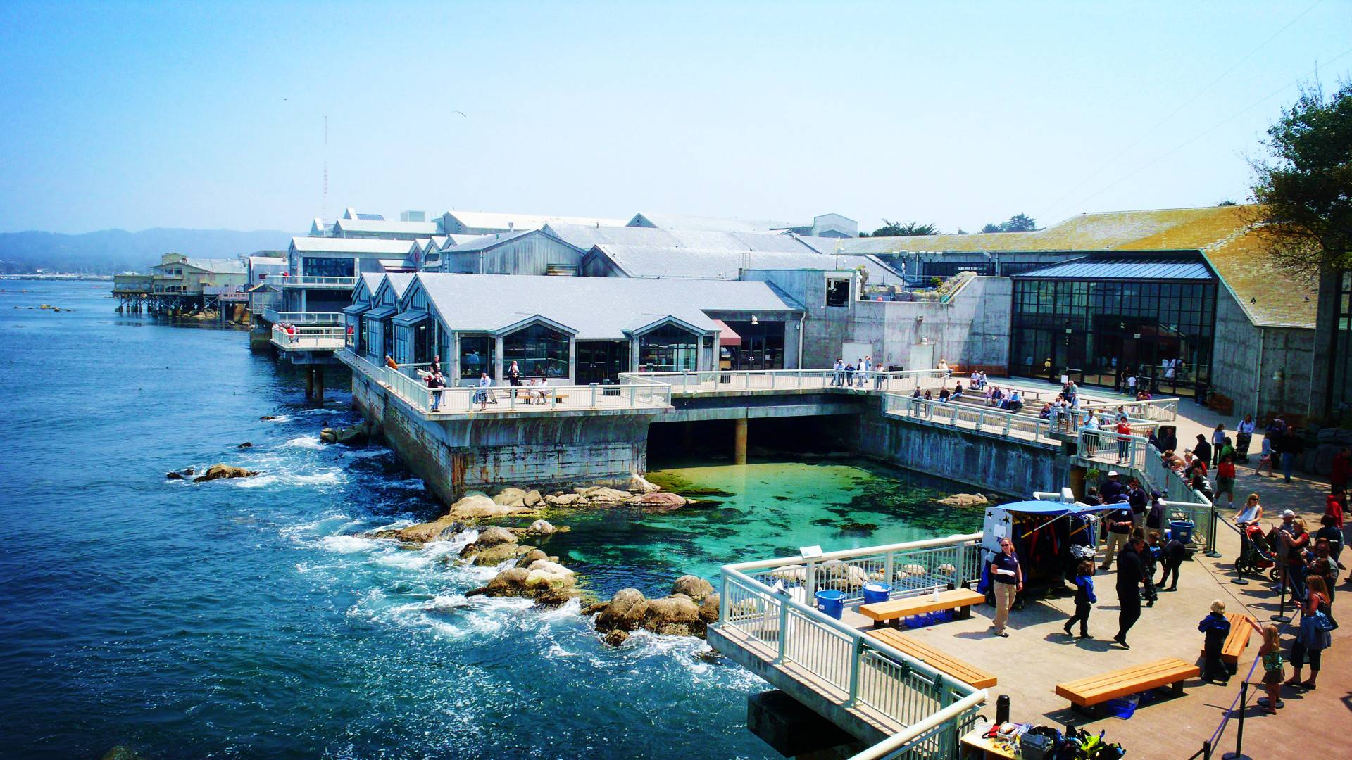 1-Day Monterey Bay, 17-Mile Drive, Carmel-by-the-Sea (with Monterey Bay Aquarium) Tour