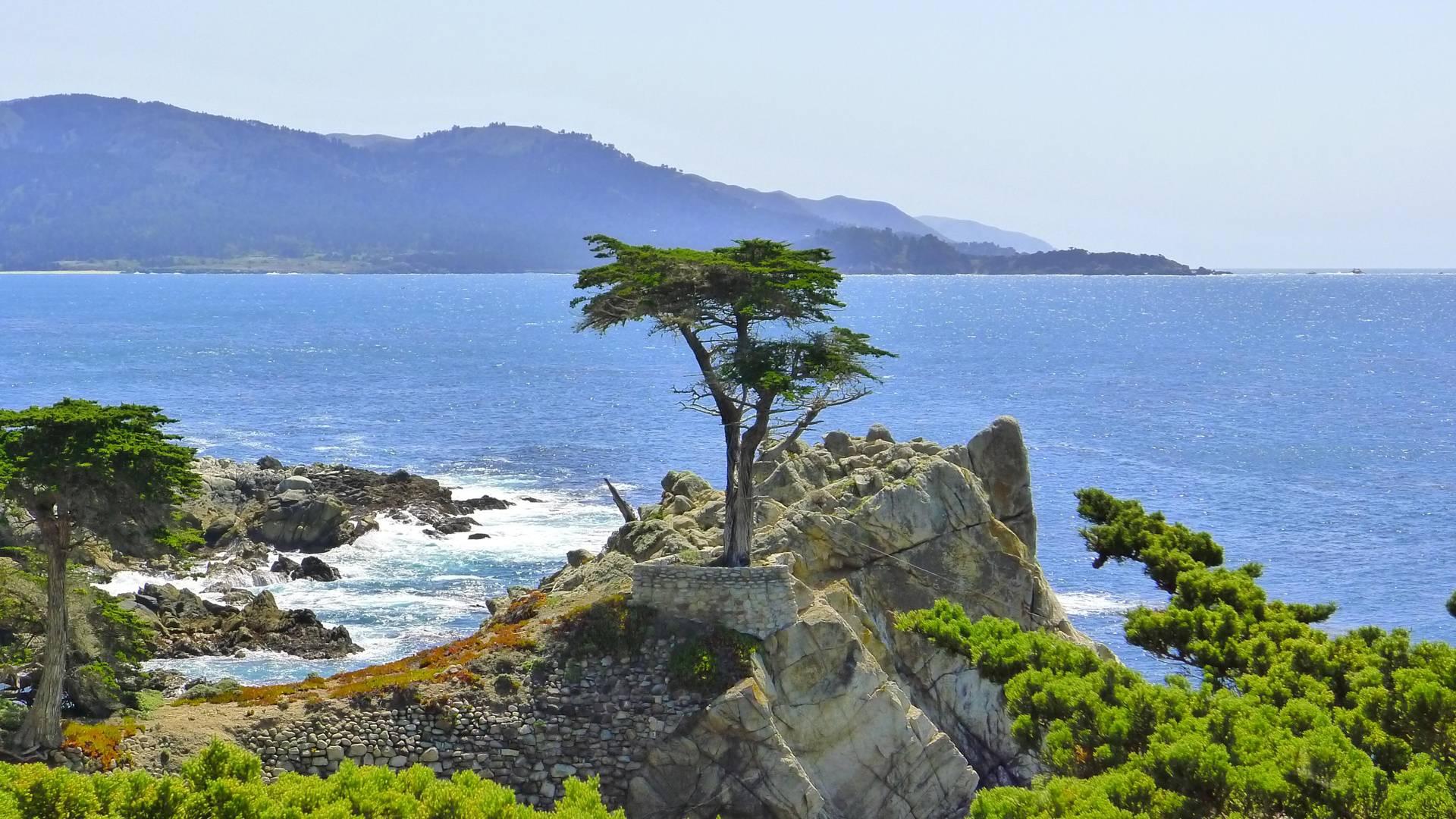 5-Day San Francisco, Monterey, 17-Mile Scenic Drive Tour