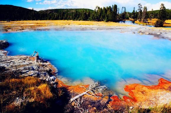 Yellowstone National Park Tour Disneyland Universal