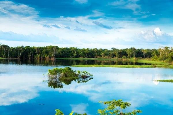 4-Day Amazon Jungle Grand Adventure