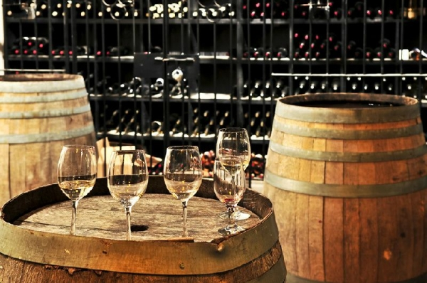 Small Group Cava and Wine Day Trip from Barcelona