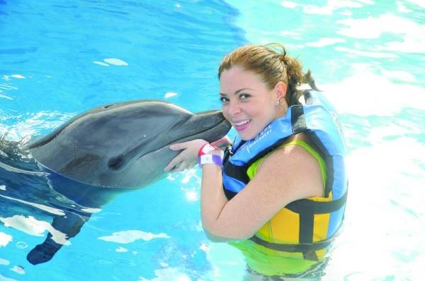 Dolphin Swimming Adventure