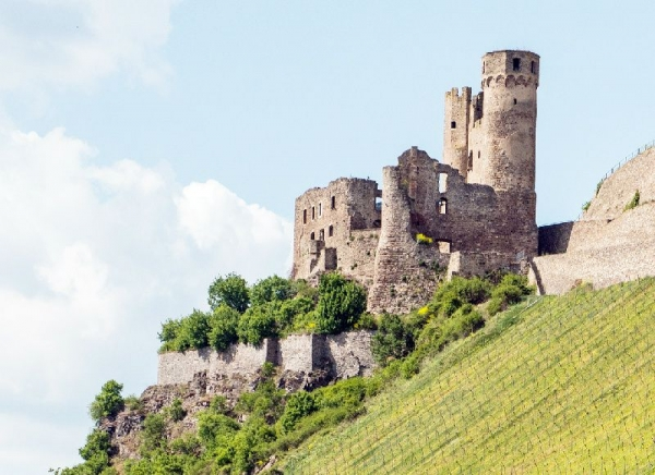 Rhine Valley Day Trip from Frankfurt w/ Rhine River Cruise, Lunch, and Wine Tasting
