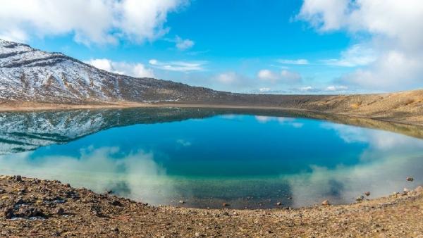 7-Day North Island Adventure Tour: Auckland, Raglan and Wellington W/ Sea kayaking & Maori experience