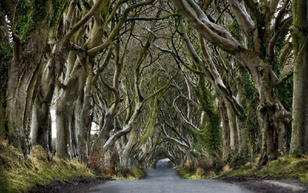 Game of Thrones Location Tour from Dublin