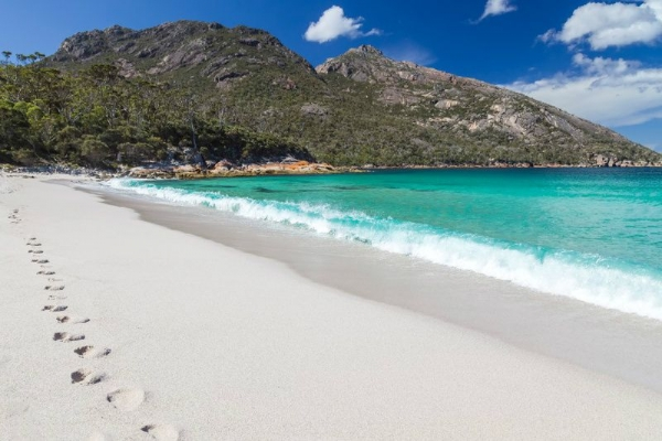 Wineglass Bay & Freycinet Day Tour