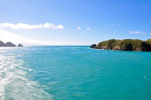 16-Day Amplified New Zealand Tour from Christchurch