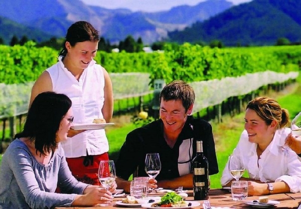 Marlborough Deluxe Full Day Driving Wine Tour