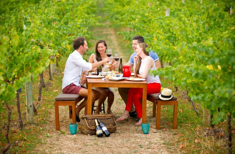 Barossa Valley Intimate Winery Tour via Adelaide Hills