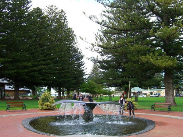 Victor Harbor and McLaren Vale Tour