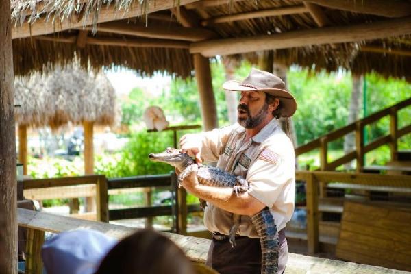 Everglades & Miami Adventure Tour from Orlando