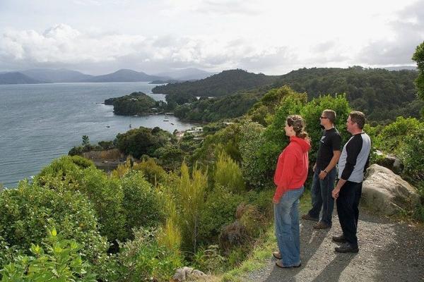 Stewart Island Village and Bays Tour
