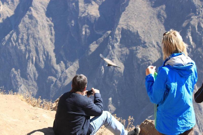 4-Day Arequipa & Colca Canyon Tour