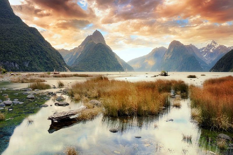 7-Day Spectacular New Zealand Self-Drive Tour: Auckland to Queenstown