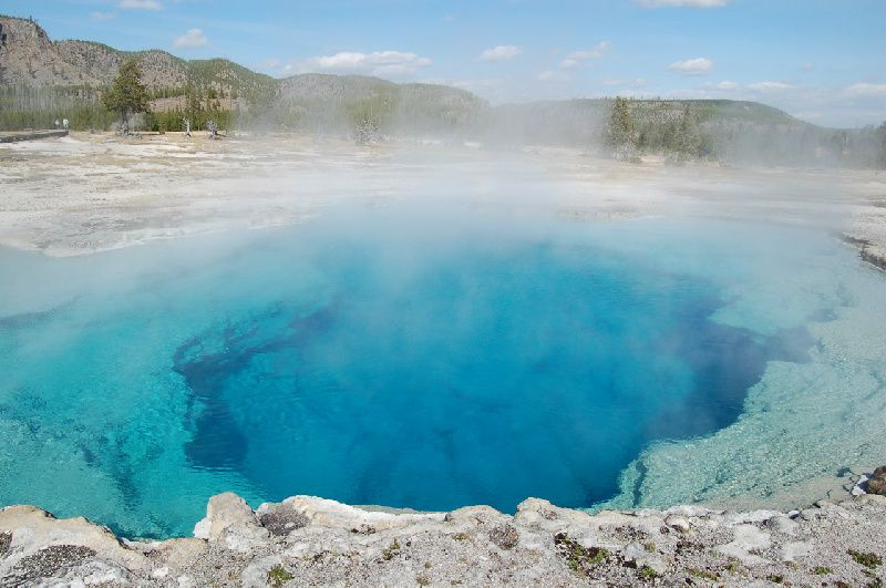 Yellowstone Lower Loop Tour From West Yellowstone