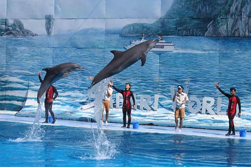Safari World & Marine Park Tickets & Transfer with Buffet Lunch
