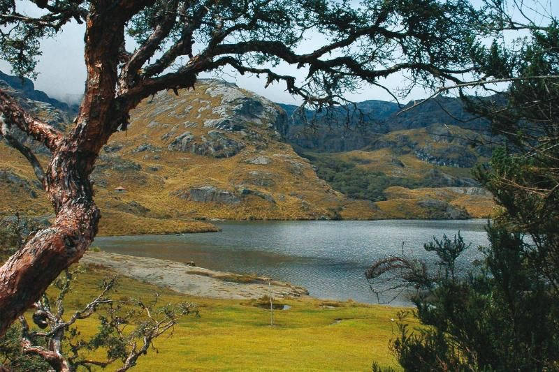 Cajas National Park Day Trip From Cuenca