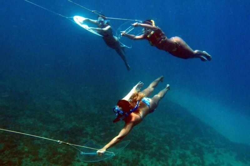 Underwater Flying in Fernando de Noronha W/ BBQ Lunch