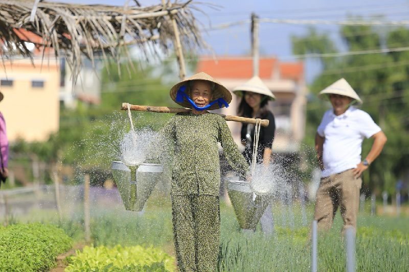 Tra Que Vegetable Village Bike Tour From Hoi An