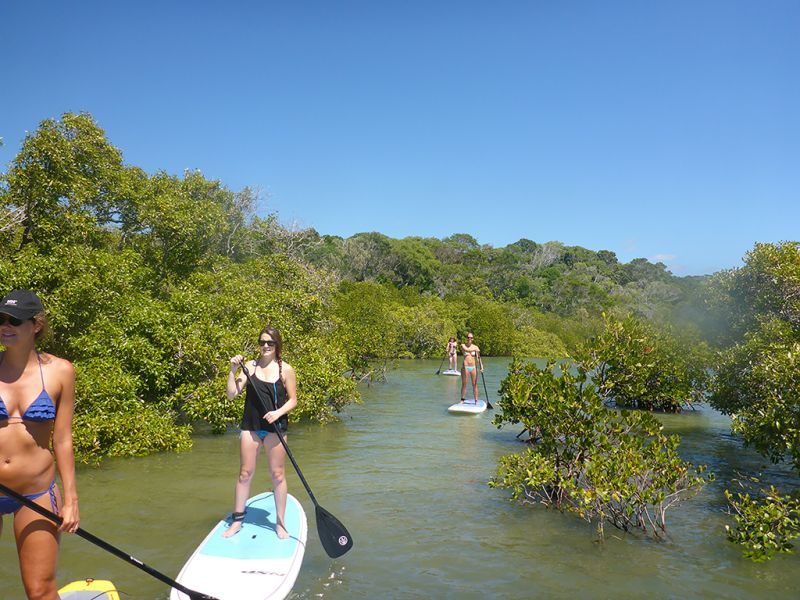 Rainbow Beach Stand Up Paddle Lesson Eco Tour