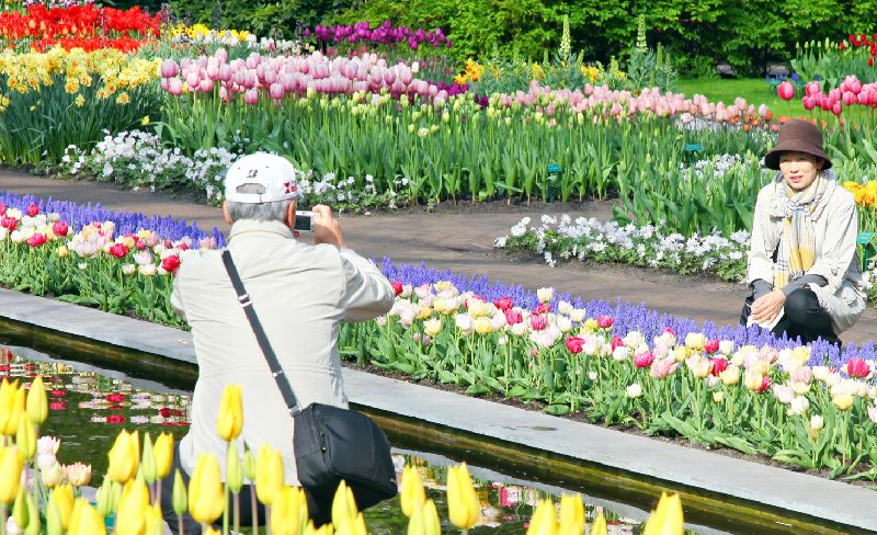Keukenhof Flower Garden Tour from Amsterdam with Bulb Farm